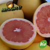 Bio Grapefruits rose